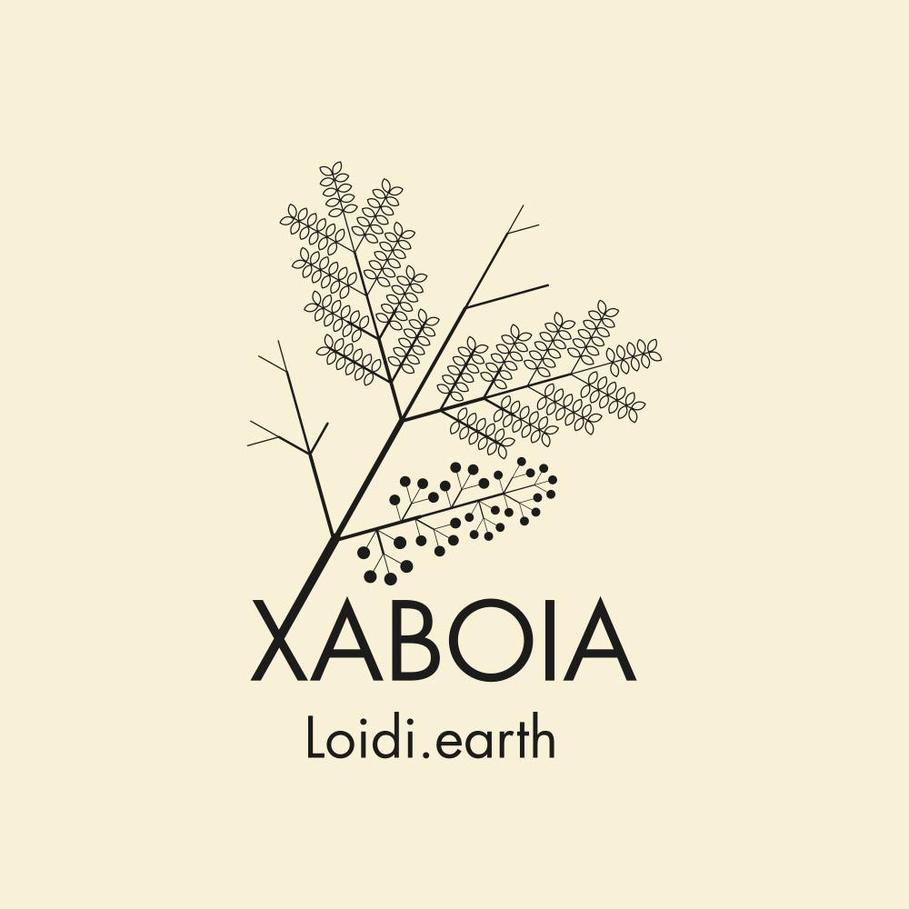 Xaboia Loidi.earth
